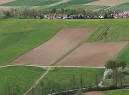 landwirtschaftliche fläche kaufen ackerland sachsen kaufen thema proplanta de