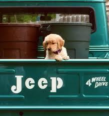 light blue jeep stiles stilinski not my jeep