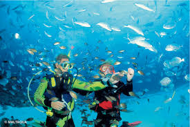 maltaqua padi advanced open water complete holiday package malta