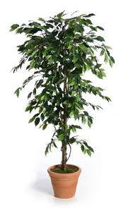 lifelike easy maintenance artificial faux trees