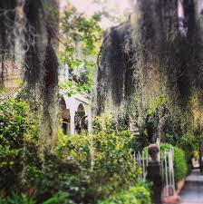 charleston area convention and visitors bureau charleston sc 98 best charleston in yester year and now images on