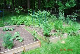 Build Vegetable Garden Fence by Gardeners With Kids The Vegetable Garden Fence