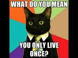 Worlds Funniest Meme - world s 15 funniest memes youtube