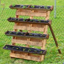 Diy Strawberry Planter by Container Gardening Strawberry Planter Using Pallet