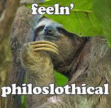 Best Sloth Memes - fun claw funny cats funny dogs funny animals funny pictures of