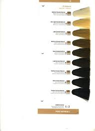 igora royal hair color color to develiper ratio color touch demi permanent hair color by wella killerstrands