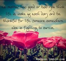 life is short quote pinterest 64 beautiful quotes on life with images for friendship really