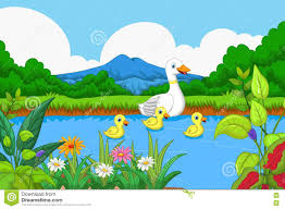 duck cartoon swimming in lake with landscape background stock