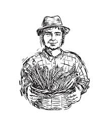 farmer with a basket of corn vector character stock vector art