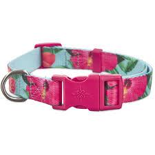 dog collar mardi gras chevron dog collars best small to large dog collars petco