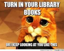 Cat Meme Maker - turn in your library books beggin cat meme generator