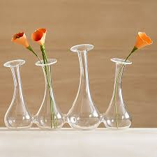 Nice Flower Vases Interior Luxurious Transparent Bud Vase To Place Flowers With