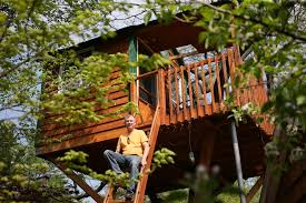 treehouse with fireplace cable prompts schaumburg to consider