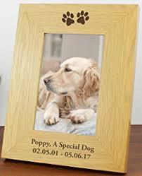 dog photo album personalised dog pet memory photo album with box co uk
