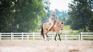 The Barn Owl Carol Stream The Colorado Horse Park