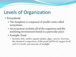 chapter 18 section 1 objectives identify a key theme in ecology