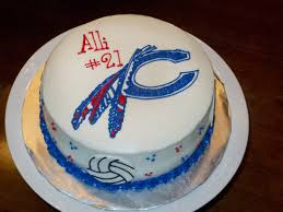 stir crazy confections volleyball cake