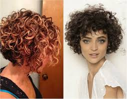 medium length curly bob hairstyles lovely short curly haircuts you will adore hairdrome com