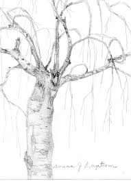 grow as an artist how to draw trees donna jean engstrom