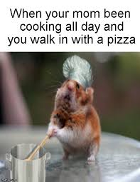 Funny Cooking Memes - cooking all day imgflip