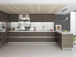 endearing modern kitchen cabinets also home decoration ideas