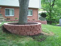 landscaping around trees professional work silver