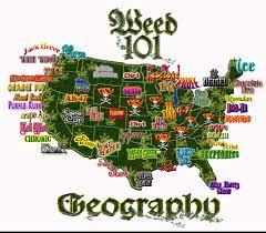 Colorado Marijuana Dispensary Map by Funny Weed Via I267 Photobucket Com