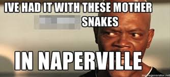 Snakes On A Plane Meme - naperville illinois residents say snakes are taking over their