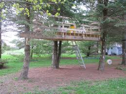 tree platform design of your house its idea for your