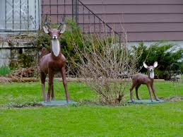 let s stop it with the deer on lawns robot