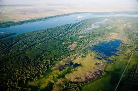 a decade on lower danube exceeds green corridor targets wwf