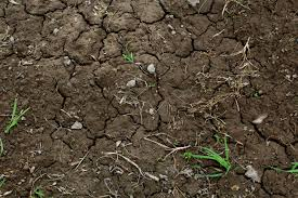 soil formation weathering process weathering agents chemistry