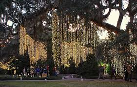 hanging vertical lights from trees wedding ideas solar