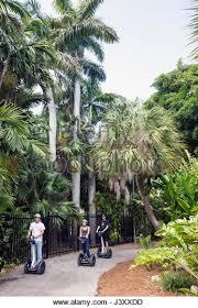 Miami Beach Botanical Garden by Botanical Garden Plants Palms Stock Photos U0026 Botanical Garden