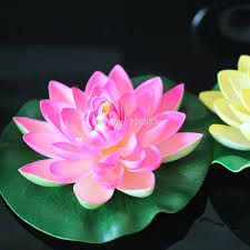 aliexpress com buy full water lily lotus lotus leaf plants home