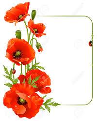 border poppy flowers clipart