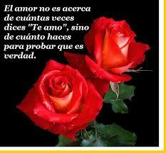bonitas de rosas rojas con frases de amor imagenes de amor facebook fotos de rosas rojas con frases de amor para enamorar imagen de
