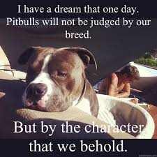 Pitbull Meme - i have a dream that one day pitbulls will not be judged by our