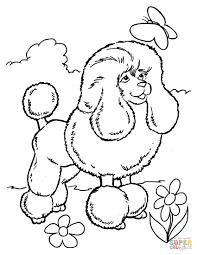 poodle and butterfly coloring page free printable coloring pages