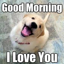 Funny Love You Meme - good morning i love you feeling girlfriend good morning