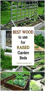 Choosing The Best Ideas For Tips For Choosing The Best Wood For Raised Garden Beds Australian