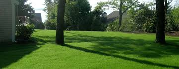 cape cod irrigation and system maintenance holmes land services