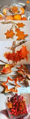 best 25 orange ornaments ideas on dried oranges