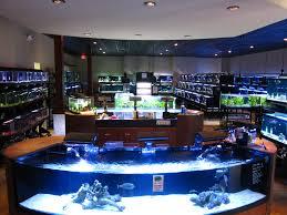Georgia Aquarium Floor Plan by Best 25 Aquarium Shop Ideas On Pinterest 1 Gallon Fish Tank