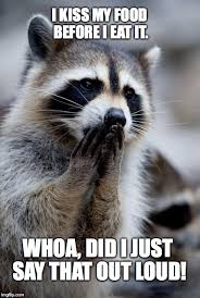 Raccoon Meme - surprised raccoon meme generator imgflip