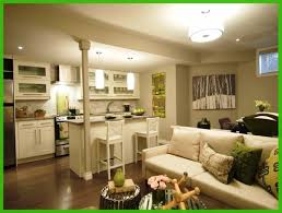 Basement Apartment Ideas Basement Apartment On Pinterest - Designing a basement apartment