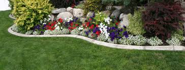 Landscaping Company In Miami by Old Landscaping Inc Landscaping U0026 Sprinklers Miami Fl
