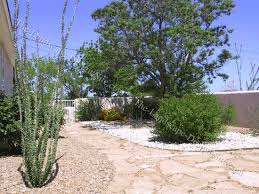 Ideas For Front Yard Landscaping Southwestern Front Yard Planting Ideas