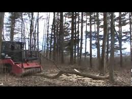 Diamond Hoggers Part 175 - forestry mulching machines bull hog ftx148 fecon youtube