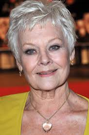 how to get judi dench hairstyle celebrities with gray hair from youbeauty com